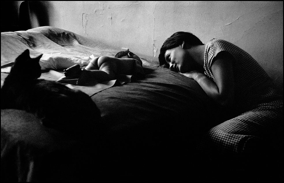 Elliott Erwitt: New York, 1953 © Elliott Erwitt/Magnum Photos/Contrasto